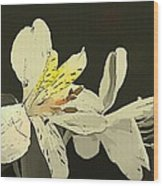 Lily Light Wood Print