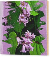 Lily Of The Valley - In The Pink #1 Wood Print
