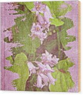 Lily Of The Valley - In The Pink #3 Wood Print