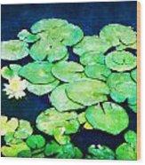 Lily Pads And Lotus Wood Print