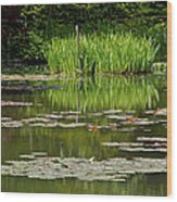 Lily Pads At Giverney Wood Print