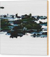 Lily Pads On White Water Wood Print