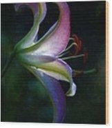 Lily's Inner Glow Wood Print