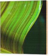 Lime Curl Wood Print