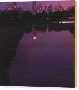 Lincoln Park In Chicago - Late Summer Dusk Wood Print