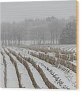 Lines In The Snow Wood Print by Odd Jeppesen