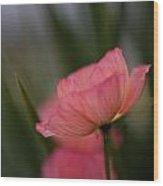 Lines Of Floral  Wood Print