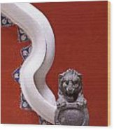 Lion And Bannister Puebla Mexico Wood Print