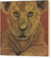 Lion Cub Wood Print by Christy Saunders Church
