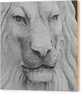 Lion In Stone Wood Print