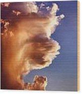 Lion King Cloud Wood Print