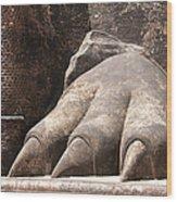 Lion's Paw Sigiriya Wood Print