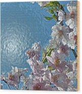 Liquid Cherry Wood Print by Jen White