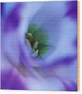 Lisianthus Wood Print by Kathy Yates