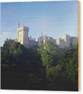 Lismore Castle, Co Waterford, Ireland Wood Print