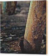 Listing Wood Print by Odd Jeppesen