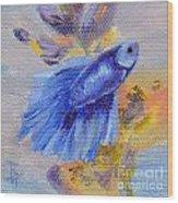 Little Blue Betta Fish Wood Print