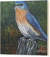 Little Blue Bird Wood Print
