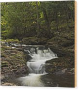 Little Carp River Falls 3 Wood Print