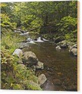 Little Carp River Falls 5 Wood Print