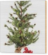 Little Christmas Tree With Red Ribboned Gifts On White  Wood Print by Sandra Cunningham