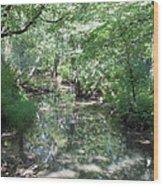 Little Creek Reflections Wood Print