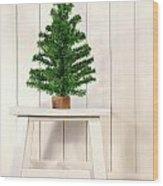 Little Green Fir Tree Wood Print by Sandra Cunningham