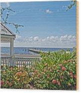 Little Harbor Tampa Bay Wood Print