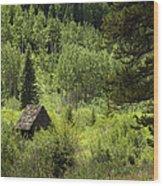 Little House - Vail Wood Print