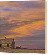 Little House On The Colorado Prairie 2 Wood Print by James BO  Insogna