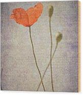Little Poppy Wood Print