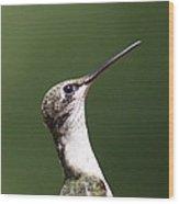 Little Princess - Hummingbird Wood Print