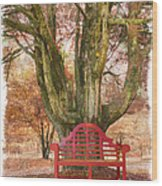 Little Red Bench Wood Print by Debra and Dave Vanderlaan