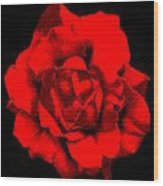 Little Red Flower ... Wood Print