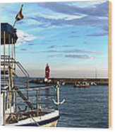 Little Red Lighthouse Wood Print