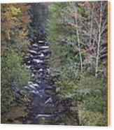 Little River - North Carolina Autumn Scene Wood Print