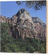 Little Virgin River - Zion National Park Wood Print