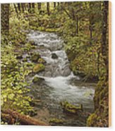 Little Zig Zag Stream Wood Print