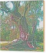 Live Oak On The Teche Wood Print