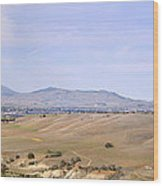 Livermore Valley Panorama Wood Print