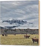 Livingstone Range And Pastureland Wood Print by Darwin Wiggett