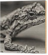 Lizard In Bw Wood Print