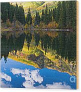 Lizard Lake Reflections Wood Print