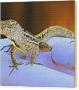 Lizard On The Pipe Wood Print