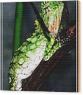 Lizard With Oil Painting Effect Wood Print