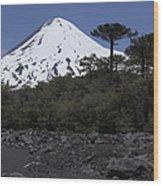 Llaima Volcano, Araucania Region, Chile Wood Print