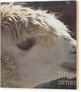 Llama Mmama Wood Print