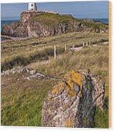 Llanddwyn Rock Wood Print