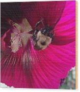 Loaded Bee Wood Print