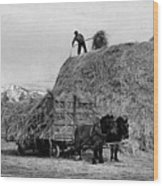 Loading Hay Wood Print by Arthur Rothstein